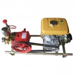 Power-Sprayer-3WZ-30-with-EY20-